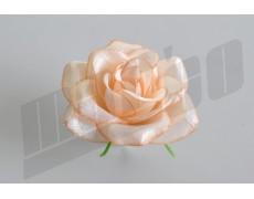 Ruža hlava